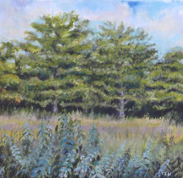 Field at Bull Mill - Oil on Canvas - Tanya Hinton